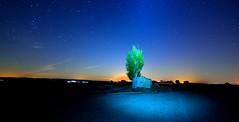TE ILUMINO  !!! (6toros6) Tags: alfredo aficionados azul sombras d7100 flickr12days hermita noche juego nikon luz luna navarra naturaleza nocturna peralta paisaje olvidado invierno cielo tierra ruinas trankilidad estrellas campo casa verde