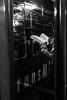 296 - octubre 23 (Galo Naranjo) Tags: transmilenio libro book lector reader fantasma ghost bogotá colombia brt busrapidtransit bus pasajeros passengers usuarios users enriquepeñalosa sitp alcaldíapeñalosa bogotámejorparatodos