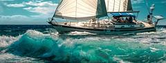 A few days later in Tavernier Key. (Aglez the city guy ☺) Tags: sailboats navigating waves keys miamikeys tavernierkey miamifl monroecounty outdoors blue seashore seascape sea