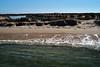 Ria Formosa, Deserta L1000878 (x-lucena) Tags: riaformosa ilhadeserta algarve