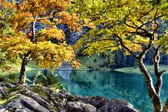 Switzerland (otto.detlef) Tags: felsen woter wasser water see bäume laub blätter leaves deciduous wald forest berge mountains switzerland nikon nikond5300 d5300 landschaft landscape