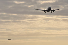 [07:52] ..the 27R approach. (A380spotter) Tags: approach landing arrival finals shortfinals threshold silhouette airbus a320 200 a320neo™ newengineoption prattwhitney purepower® gearedturbofan™ pw1100 pw1100g pw1100gjm turbofan engine powerplant sharklets™ sharklets sharklet™ sharklet wingtipdevices wingtipdevice winglets winglet daina firsttoflya320neo lessnoiselessfuellessco2 decals decal stickers sticker deutschelufthansaag dlh lh lh3ly lh0924 fralhr boeing 777 200er 772 n773an ship7ad americanairlines aal aa aa0106 jfklhr anewamerican futurebrand geuuo internationalconsolidatedairlinesgroupsa iag britishairways baw ba ba0963 hamlhr runway27r 27r london heathrow egll lhr