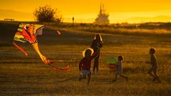 Summer Fun (iPhilFlash) Tags: kite vancouver goldenhour rimlight sunset backlight britishcolumbia garrypointpark play steveston canada richmond outdoor children outdoors ca
