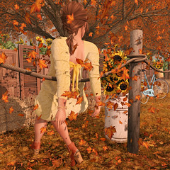 {Blog 309} Falling Leaves (veronica gearz) Tags: avi avatar autumn blog blogging blogger blogs bloggers bento secondlife second sl fall 2ndlife life lelutka maitreya mesh elikatria candydoll cae tetra collabor88 foxcity wereclosed dustbunny persefona whatnext alirium studioskye littlebranch action leaves sunflowers sunflower