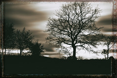 Autumn motives (uschmidt2283) Tags: a7r landschaften langzeit lichtoutdoor sunrice wolken