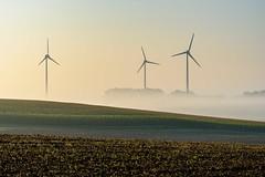 Windräder im Nebel (webpinsel) Tags: energie windräder frühmorgens frühnebel landschaft münsterland natur nebel sommer