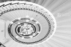 Classic - Heal's, London, UK (davidgutierrez.co.uk) Tags: london architecture art city blackandwhite davidgutierrezphotography nikond810 nikon interior urban travel blackwhite photography londonphotographer property uk photographer monochrome stairs bw black white blackandwhitephotography arts unitedkingdom 伦敦 londyn ロンドン 런던 лондон londres londra england europe beautiful cityscape davidgutierrez capital structure britain greatbritain centrallondon d810 buildings design building indoor interiors greyscale contemporary heals staircase spiralstaircase stores shopping nikon2485mmf3545gedvrafsnikkor nikon2485mm iconic landmark