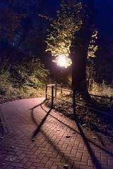 2017 Nightwalk (jeho75) Tags: sony ilce 7m2 zeiss deutschland germany wenigerode nacht night spaziergang walk laterne lantern light licht schatten shadow
