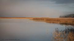 20171107003238 (koppomcolors) Tags: koppomcolors glafsfjorden värmland varmland sweden sverige scandinavia