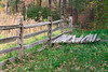 Progressing Nicely (Chancy Rendezvous) Tags: fence osv osvorg oldsturbridge village massachusetts newengland farm corn agriculture grass trees autumn fall field chancyrendezvous