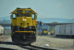 Idling for days (Arkangel Productions) Tags: nysw susquehanna sd40t2 3014 binghamton
