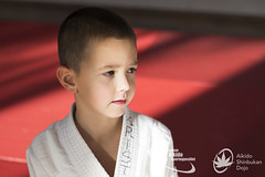 20171007_1623__TGY3549_aikido (Shurenkan Aikido Sportegyesület) Tags: aikido budapest hochstrasser norbert sport ute baklászló harcművészet adults camp children child connect art aikikai aiki awase aikdio association aikidokids aikids shurenkan sensei seminar shihan style sas dojo friends fun frieds fight game gyerektábor group girls hungary happy hours hour hand jo japanese japan dojos kids keiko ken kyu kid kamiza kazuo l learning exam edzés
