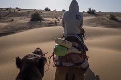 Rajasthan - Jaisalmer - Desert Safari with Camels-73