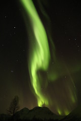 Norwegian aurora (roger_forster) Tags: norway aurora