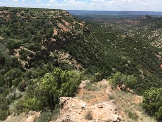 Texas Free Range Hunt – Palo Dura Canyon 3