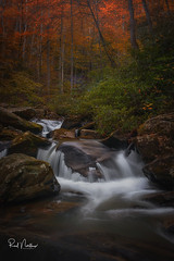 Pearson Falls Autumn Cascade  - Saluda, NC (Reid Northrup) Tags: creek water forest cascade waterfall rock river stream rrs nikon nature trees landscape longexposure northcarolina reidnorthrup fall autumn
