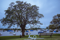 Unplugged (Mariano Colombotto) Tags: yachtclubargentino yacht marina tree river boats sailboats bench calm quiet peace travel clouds cloudy nublado nubes viaje arbol rio nikon photographer photography infinitexposure autofocus