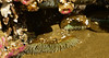 Sea Anemone (Karen McQuilkin) Tags: seaanemone sealife invertebrates carnivores ocean rocks oregon