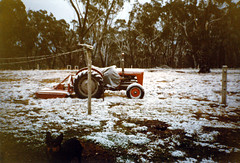 Snow Mares Forest 2 (55pmh) Tags: 1996 1993 1994 1995 1997 1998 1999 35mm film retro snapshots southern highlands southernhighlands national park nationalpark nsw newsouthwales wombeyan caves snow cold wombeyancaves maresforestroad old richlands taralga 1988 1989 1990 1991 1992 maresforestnationalpark maresforest oldphoto tractor kelpie masseyferguson