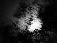 dance with night wind, reimagined (series) (Neko! Neko! Neko!) Tags: blackandwhite blackwhite bw mono monochrome night wind moon dreams subconsciousness feeling emotion expression expressionism surreal