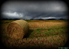 """"""" Rain On The Wind """" ("""" P@tH Im@ges """") Tags: corn stubble rain wind dramatic mountains wicklow ireland clouds"""