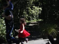 Passing thru (Snorkle-suz) Tags: reddress girl movement motion blur friends coincidence bush miniaturerailwaytracks esplanade manawatu aotearoa newzealand nz canoneos600d canoneosrebelt3i canoneoskissx5 helios44mf258mmlens helios44m helios helios44mlens