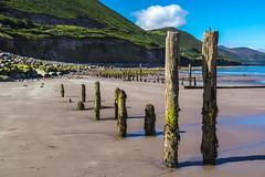 Ireland - Ring of Kerry - Rossbeigh beach (Marcial Bernabeu) Tags: marcial bernabeu bernabéu irlanda ireland irish irlandes ring anillo kerry rossbeigh playa beach