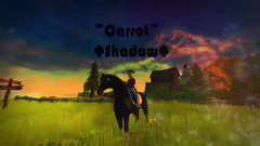 Carrot Shadow (Mira.DB) Tags: grass love moon horse star physics green yellow lovely friend friends mira db loud laut germany poland flourgirls kasia sso stable online stables heart hearts loves like likse likes noon nonogram game games naturaleza rural pond newyork india foliage light contrast lights water sunset beach