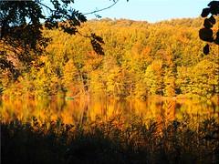 Autumn at  the  lake Uklei (Ostseetroll) Tags: deu deutschland geo:lat=5418244339 geo:lon=1063406087 geotagged kirchnüchel schleswigholstein ukleisee herbst autumn herbstfarben autumncolours spiegelungen reflections