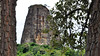 Torre de Pedra (Osvaldo Natal Forcelli) Tags: brasil brazil torre torredepedra castelo branco rodovia sp sãopaulo montanha árvore madeira textura pedra grama paisagem