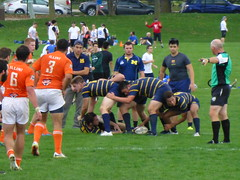 Illinois vs Michigan Rugby (army.arch) Tags: illinois rugby champaign urbana il universityofillinois