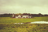 Farm (*~Dharmainfrisco~*) Tags: dharma dharmainfrisco ireland dark hedges game thrones fan tv show series hbo trees darkness creepy walkabout walk tour travel northern europe 2017 forest farm countryside historic landscape land grass wind mill windmill meadow field skies green farmhouse house idealic