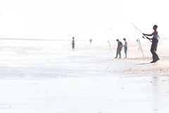 DSC_0046 (sph001) Tags: ibsp islandbeachstatepark njbeaches photographybystephenharris