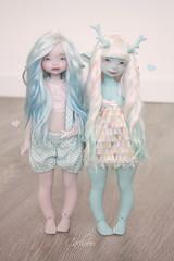 ♥ (cachoou) Tags: dustofdolls bjd doll appi cöti cöta mint jasmin