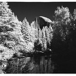 Half Dome in Infrared thumbnail