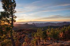 Gran Canaria (susodediego ) Tags: landscape grancanaria canaryislands nikond750 afsnikkor1424mmf28ged roquenublo teide thegalaxy susodediego infinitexposure contactgroups