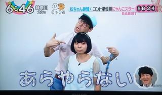 にゃんこスター 画像3