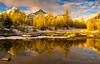 DSC08181 (www.mikereidphotography.com) Tags: larches fallcolors autumn canada canadianrockies lakemoraine larchvalley sentinelpass 85mm otus zeiss mirrorless a7r2 landscape golden
