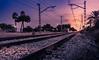 Num.5 Es hora de partir / It's time to go (Lluvia Fotografia) Tags: azul tren pineda atardecer fantasía cuadro train fantasy sunset picture canon flickr 1585