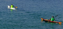 Piragüismo (alfonsocarlospalencia) Tags: piraguas verde azul diagonal amarillo bahía santander cantabria blanco deslizamiento reflejos palas armonía esfuerzo ritmo equilibrio soledad espalda luz septiembre serenidad