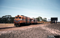 2721 XB1024 XA1402 Burngup 6 January 1982 (RailWA) Tags: railwa philmelling westrail 1982 xb1024 xa1402 burngup