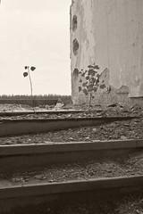 _MG_6603 (daniel.p.dezso) Tags: kiskunmajsa laktanya orosz kiskunmajsai majsai former soviet barrack elhagyatott urbex abandon