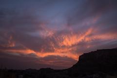 Rajasthan - Jodhpur - blue city sunset