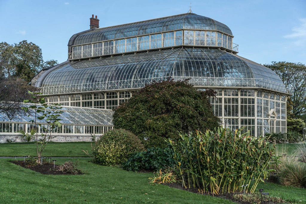 A VISIT TO THE BOTANIC GARDENS ON THE DAY AFTER AFTER STORM OPHELIA [MINIMAL STORM DAMAGE]-133319