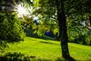 118   Beim Restaurant Apollonia (Ralf G. aus K.) Tags: bayermosaik lensflare blendenflecke grün blätter laubbaum blende fleck sonne keintiefpassfilter störung fehler bokeh sirmian apollonia