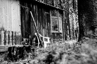 the shed int the forest with the white plastic chair