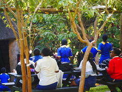"""Education at LWC • <a style=""""font-size:0.8em;"""" href=""""http://www.flickr.com/photos/152934089@N02/37581823922/"""" target=""""_blank"""">View on Flickr</a>"""