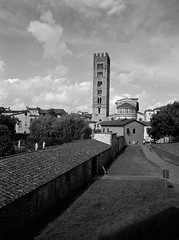Lucca (tjshot) Tags: lucca city wall walls view italy historical holiday holidays tower black white sky clouds analog print film develop development scan dead tone tones resolution agfa copex modular sharp sharpness medium format fuji 6x45 ga645wi