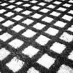 grass grid thumbnail
