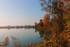 Atmosfera d'Autunno (Manuela Ceretti) Tags: autunno autumn laghi lago specchio mirror mirrors riflessi colore colors alberi